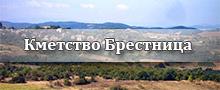 КМЕТСТВО БРЕСТНИЦА